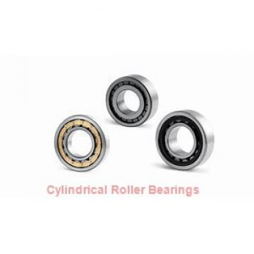 FAG NU204-E-M1A  Cylindrical Roller Bearings