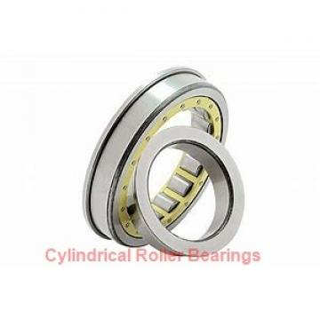 0.984 Inch | 25 Millimeter x 2.047 Inch | 52 Millimeter x 0.591 Inch | 15 Millimeter  NACHI NU205MY C3  Cylindrical Roller Bearings